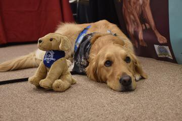 LCC Comfort Dog Program
